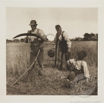 'In The Barley Harvest', 1888.
