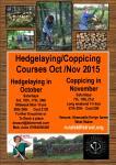 hedgecop2_poster2015