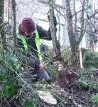 Pat hedge-laying 2014