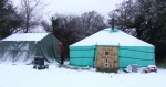 Mongolian yurt 2010